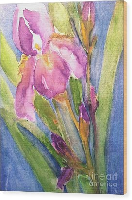 First Bloom Wood Print by Sherry Harradence