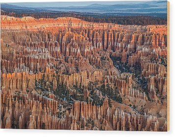 First Light In Bryce Wood Print by Pierre Leclerc Photography