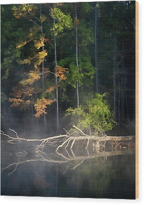 First Light Wood Print by Lana Trussell