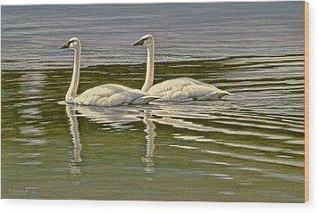 First Open Water - Trumpeters Wood Print by Paul Krapf