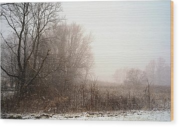 First Snow Of Winter Wood Print by Dick Wood