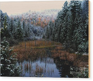 First Snow Wood Print by Steven Valkenberg