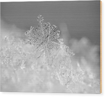 First Snowflake Wood Print