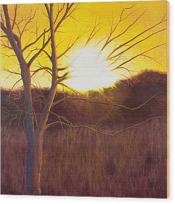 First Sunset Of Spring Wood Print by Garry McMichael