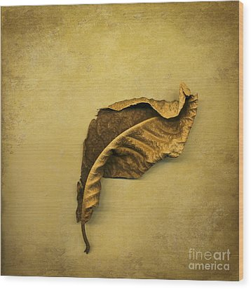 First To Fall Wood Print by Jan Bickerton