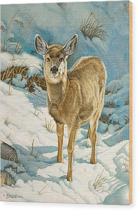 First Winter  - Fawn Wood Print by Paul Krapf