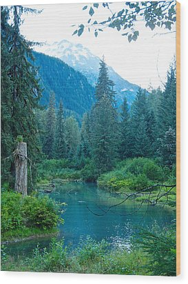 Fish Creek In Tongass National Forest By Hyder-ak  Wood Print by Ruth Hager