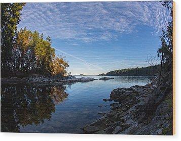Fish Eye View Wood Print by Randy Hall