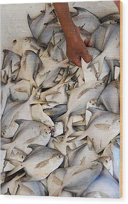 Fish Market Wood Print by Money Sharma