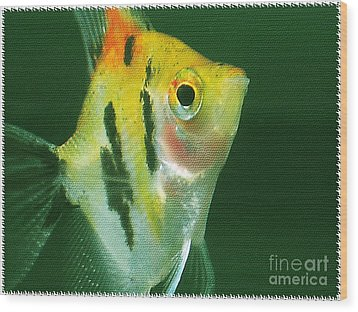 Wood Print featuring the photograph Fish Out Of Water by Nina Silver