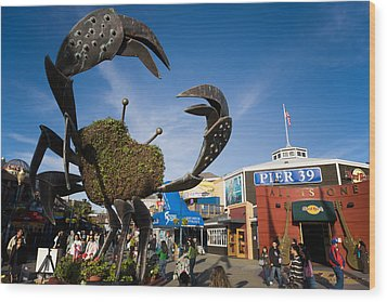 Fishermans Wharf Crab Wood Print