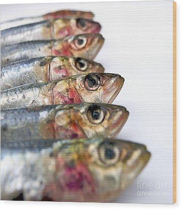 Fishes Wood Print by Bernard Jaubert