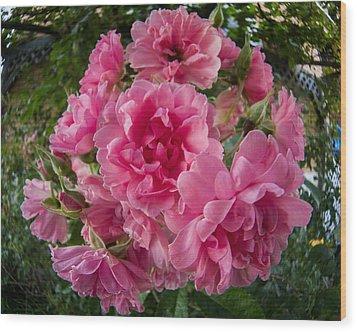 Fisheye Rose Wood Print by Carl Engman