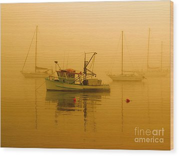 Wood Print featuring the photograph Fishing Boat by Trena Mara