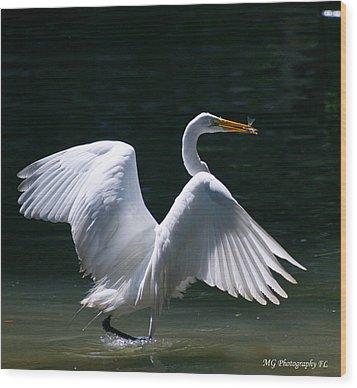 Fishing Egret Wood Print