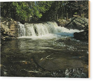 Wood Print featuring the photograph Fishing Hole by Sherman Perry