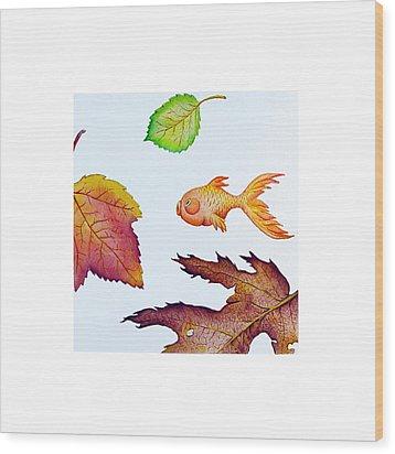 Fishsalad 4 Wood Print by Laura Dozor