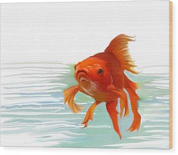 Fishy Fishy Fish Wood Print by Christian Kolle