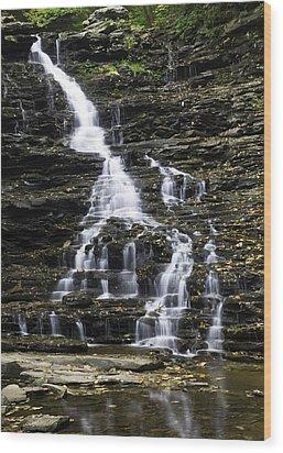 Fl Ricketts Falls Wood Print