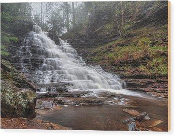 Fl Ricketts Waterfall Wood Print by Lori Deiter