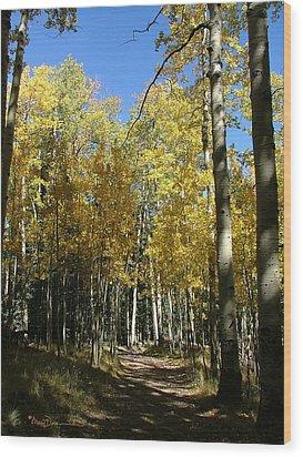 Flagstaff Aspens 802 Wood Print