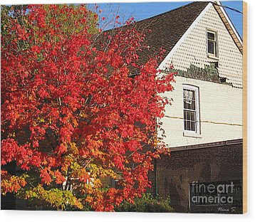 Wood Print featuring the photograph Flaming Fall Colours On Farm House by Nina Silver