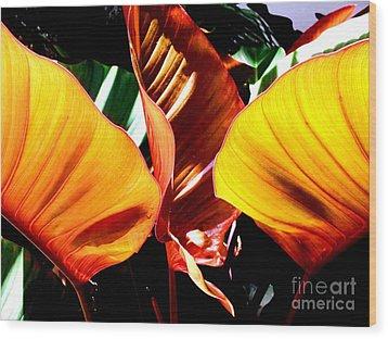 Flaming Plant Wood Print by Kristine Merc