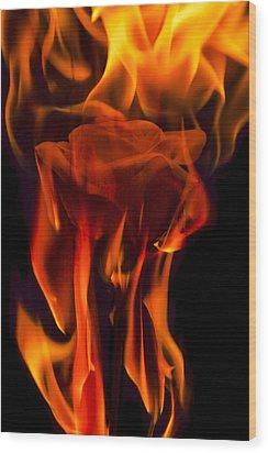 Flaming Rose Wood Print by Jon Glaser