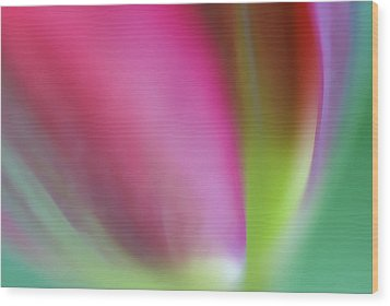 Wood Print featuring the photograph Flaming Tulip by Annie Snel