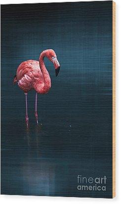 Flamingo - Blue Wood Print by Hannes Cmarits