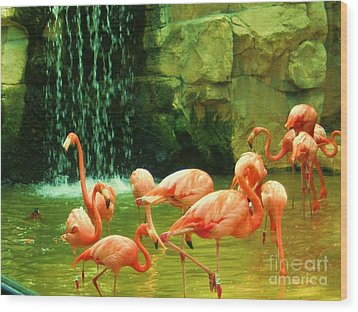 Flamingo Wood Print by Esther Rowden