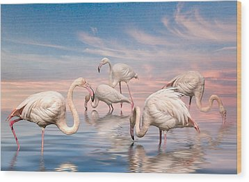 Flamingo Lagoon Wood Print