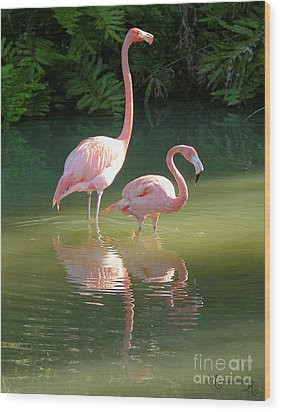 Flamingo Stroll Wood Print