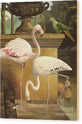 Flamingos Wood Print by Lizzie Riches