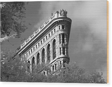 New York City - Flat Iron Prow Wood Print
