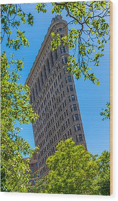 Wood Print featuring the photograph Flatiron Building by Chris McKenna