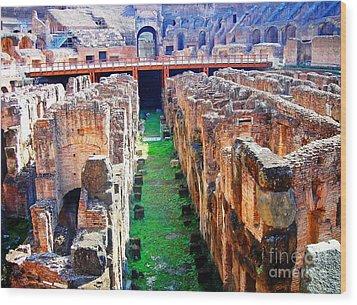 Flavian Amphitheatre Wood Print