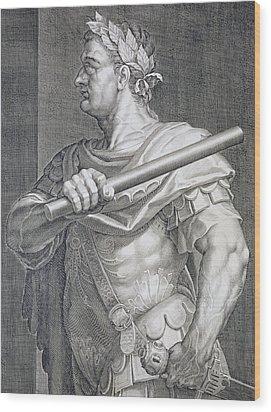 Flavius Domitian Wood Print by Titian
