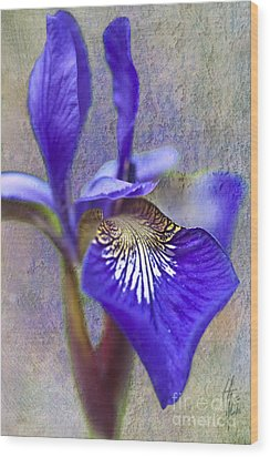 Fleur-de-lys Wood Print by Heiko Koehrer-Wagner