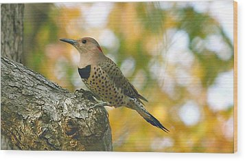 Flicker Wood Print by Debbie Sikes