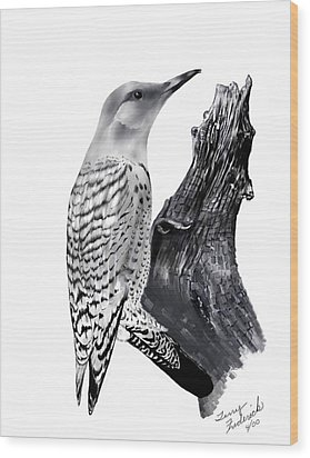 Flicker Wood Print by Terry Frederick