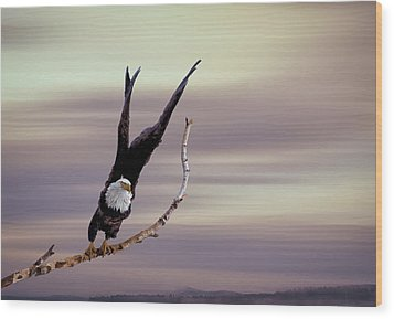 Flight  Wood Print by Gary Smith