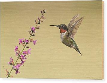 Flight Of A Hummingbird Wood Print by Daniel Behm
