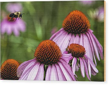 Flight Of The Honey Bee Wood Print
