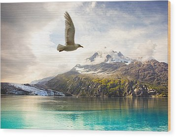 Wood Print featuring the photograph Flight Over Glacier Bay by Janis Knight
