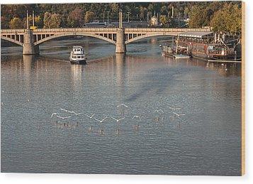 Flight Over Water Wood Print