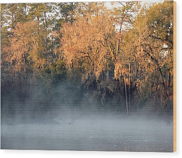 Wood Print featuring the photograph Flint River 14 by Kim Pate