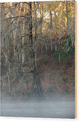Wood Print featuring the photograph Flint River 15 by Kim Pate