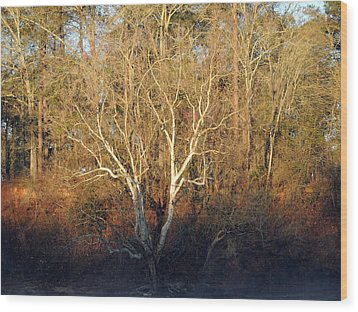 Wood Print featuring the photograph Flint River 16 by Kim Pate