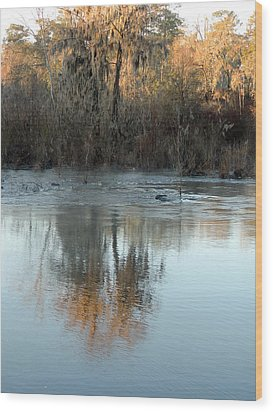 Wood Print featuring the photograph Flint River 17 by Kim Pate
